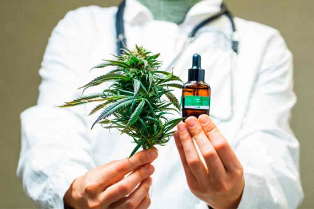 Salud; la ONU reconoce oficialmente las propiedades medicinales del cannabis