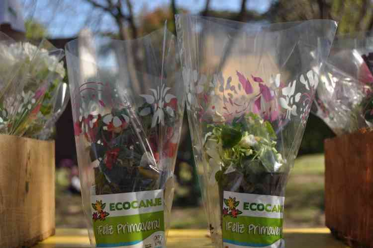 San Mariano tendrá su jornada de concientización ambiental; «La importancia del Ecocanje»